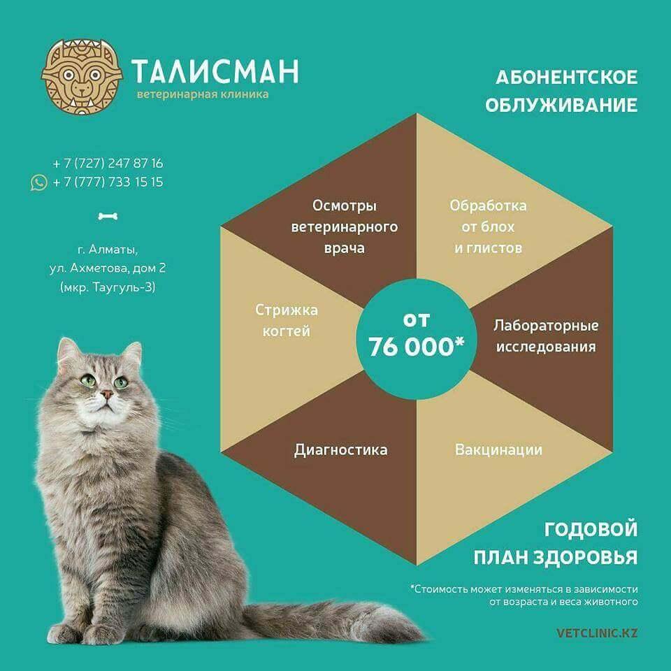 Годовой план здоровья. «Страховка для животных»